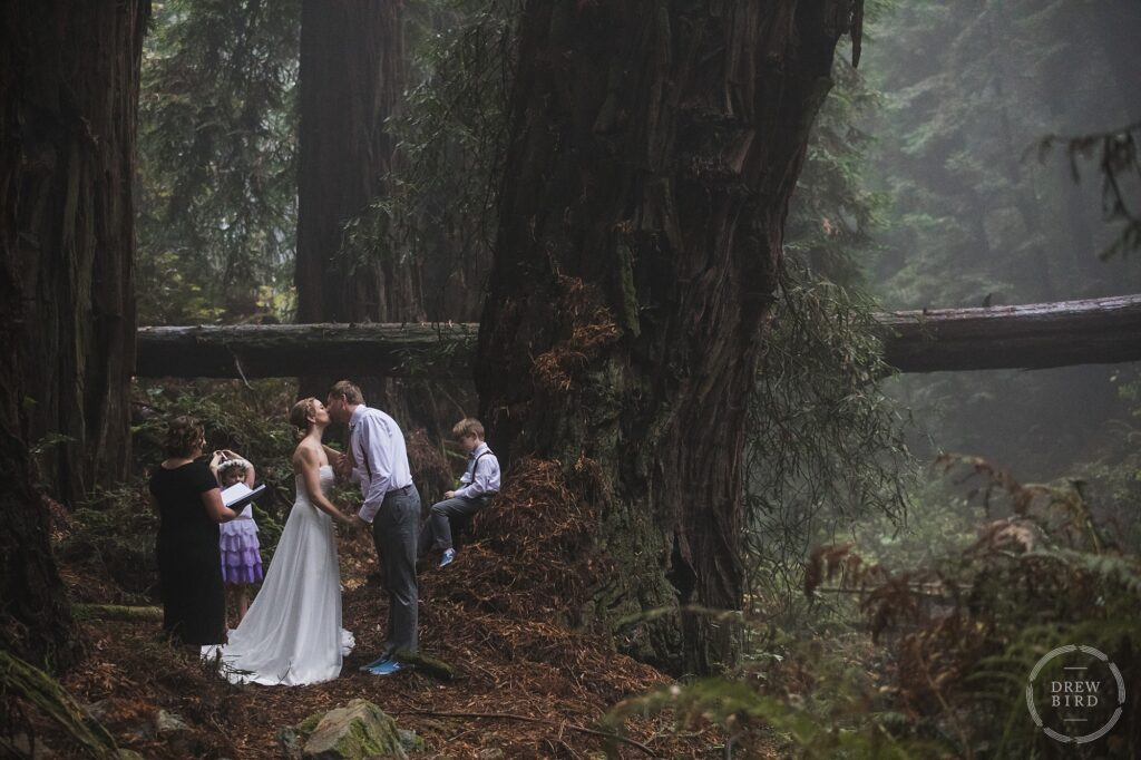 An amazing micro wedding during the Covid pandemic in an ancient old growth redwood forest. Marin county wedding elopement photographer Drew Bird.