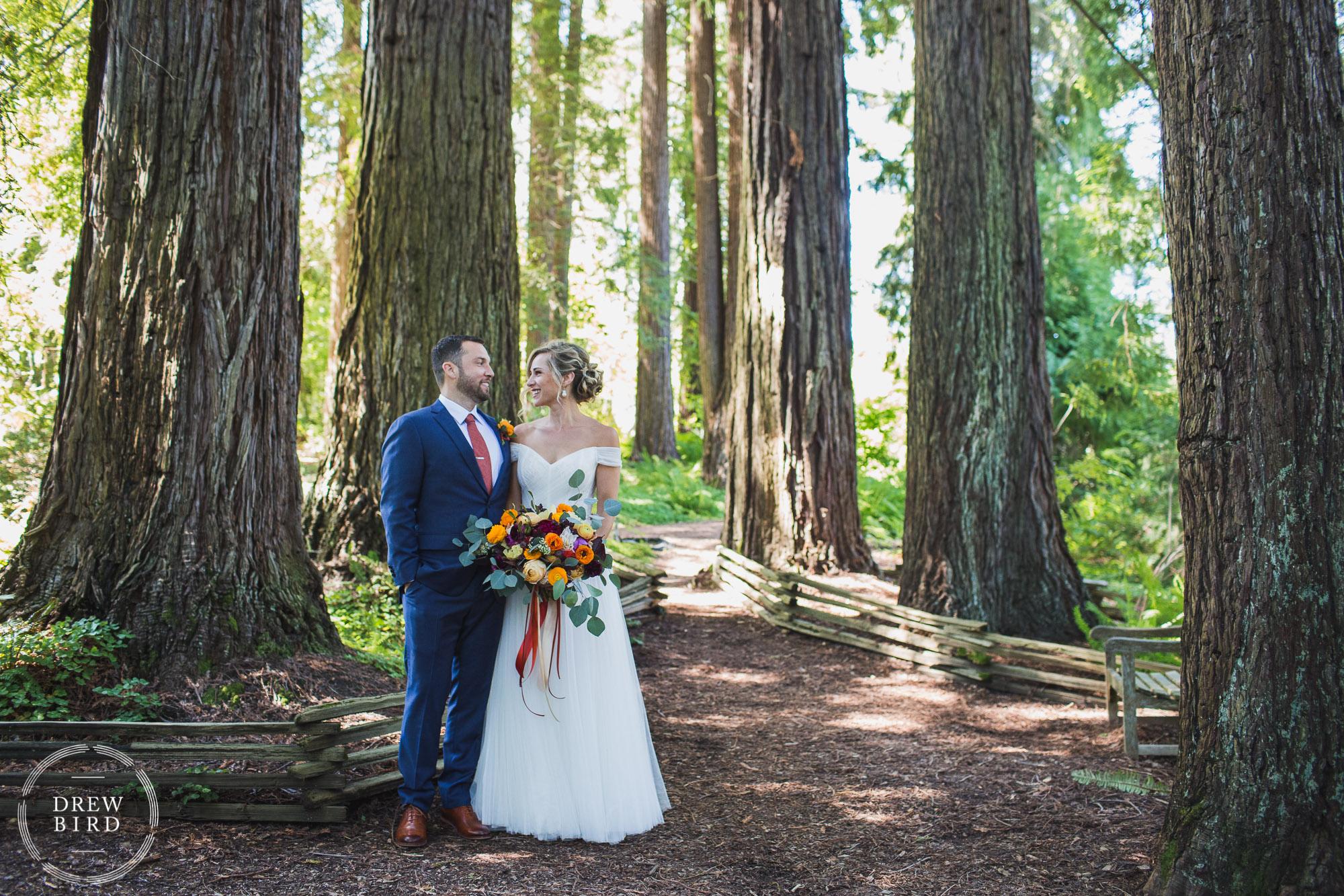 Bride and groom in a redwood forest grove. Summer wedding photos in Berkeley California. Brazilian room wedding Tilden Park